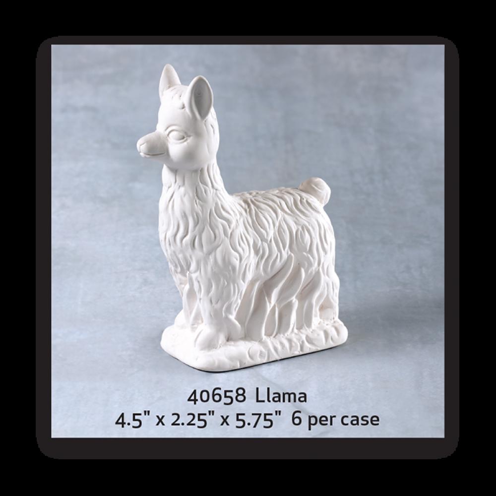 Llama - Case of 6
