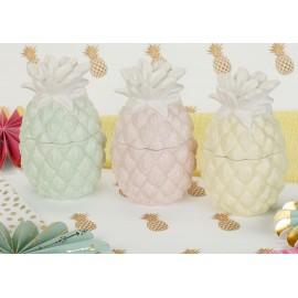 Pineapple Box,kid,duncan bisque,ceramic bisque