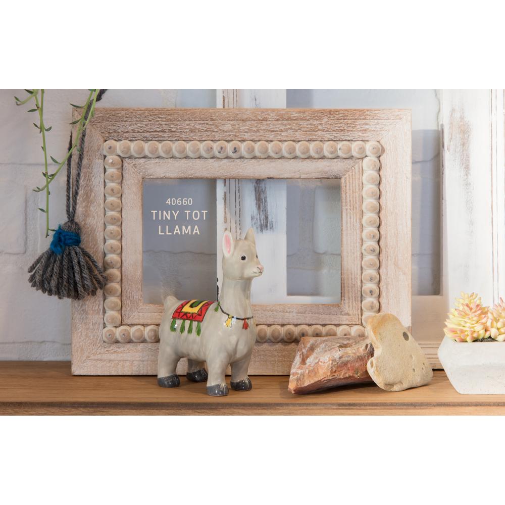 Tiny Tot Llama