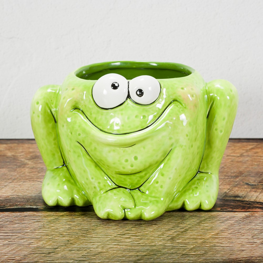 Quirky Frog - Case of 4